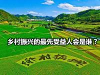 乡村振兴战略规划2022|免费下载.pdf