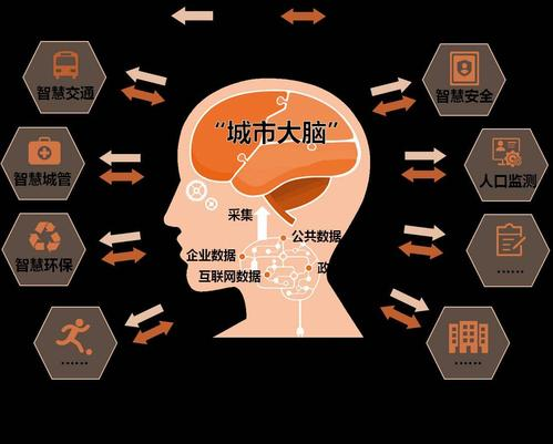 """乐清市""""城市大脑""""建设行动方案.pdf"""